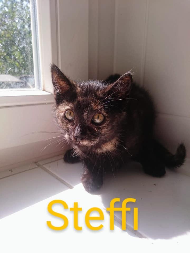 - Steffi